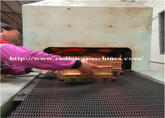 850 Degree Celcius Protective Atmosphere Continuous Brazing Furnace for Heaters supplier